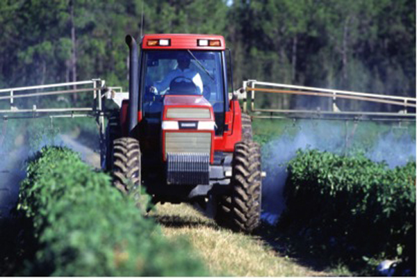 Pesticide health risks in food