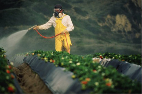 Pesticide problems for children