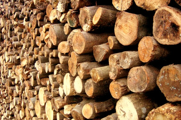 Burning Wood Biomass ~ What types of biomass fuel can be burned in a