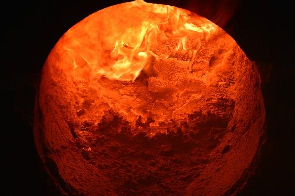 biomassinside