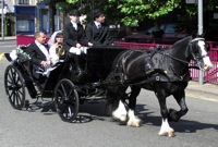 transport for your green wedding