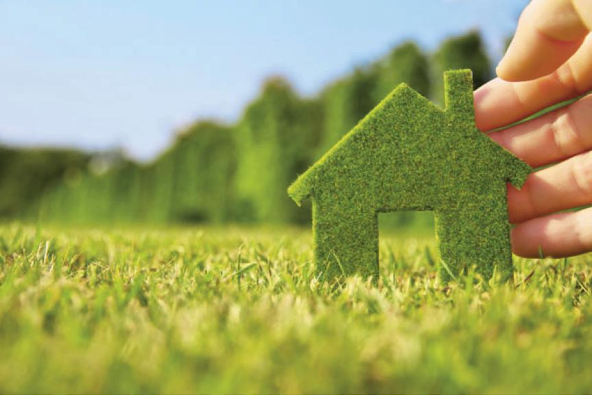 green scheme deal