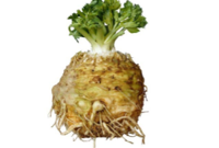 celeriac recipe