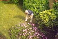 prepare your garden for winter
