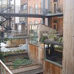eco friendly houses