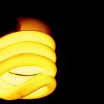 eco lighting